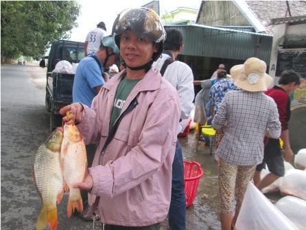 Đối với cá chép đã chết như thế này giá chỉ còn từ 5.000 - 7.000 đồng/kg