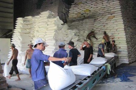 Kim ngạch xuất khẩu gạo của Việt Nam đột nhiên đảo chiều đi lên
