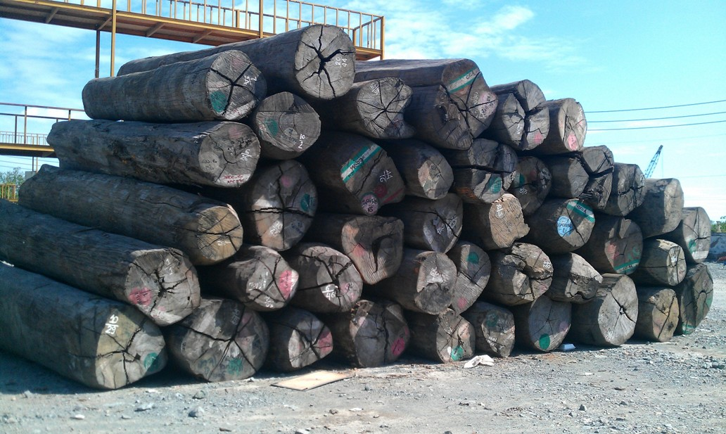 Tạm dừng tạm nhập, tái xuất gỗ từ Lào và Campuchia