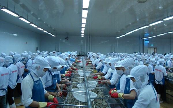 WTO ra phán quyết về vụ kiện tôm của Việt Nam: Tín hiệu tốt