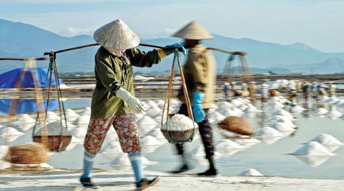 Diêm dân thừa muối, Việt Nam vẫn phải chi 400 tỷ nhập muối