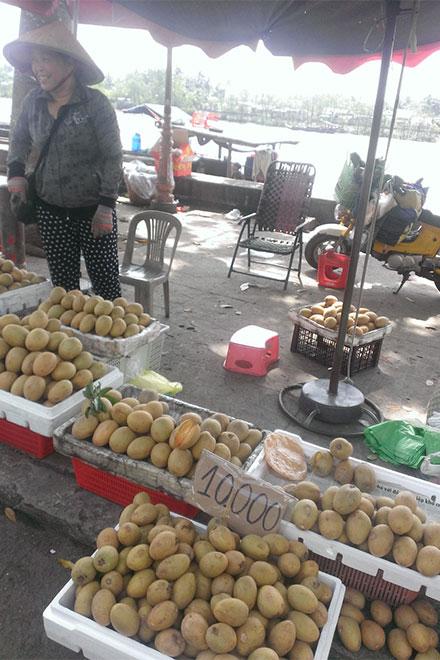 Không chỉ thanh long mà khá nhiều loại hoa quả khác cũng đang được bán với giá bèo do thiếu đầu ra.