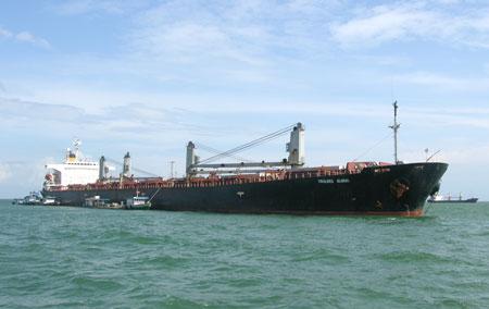 Tàu Global của Vinalines