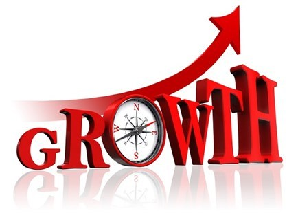Kinh tế Việt Nam 2015 từ góc nhìn của các doanh nghiệp lớn