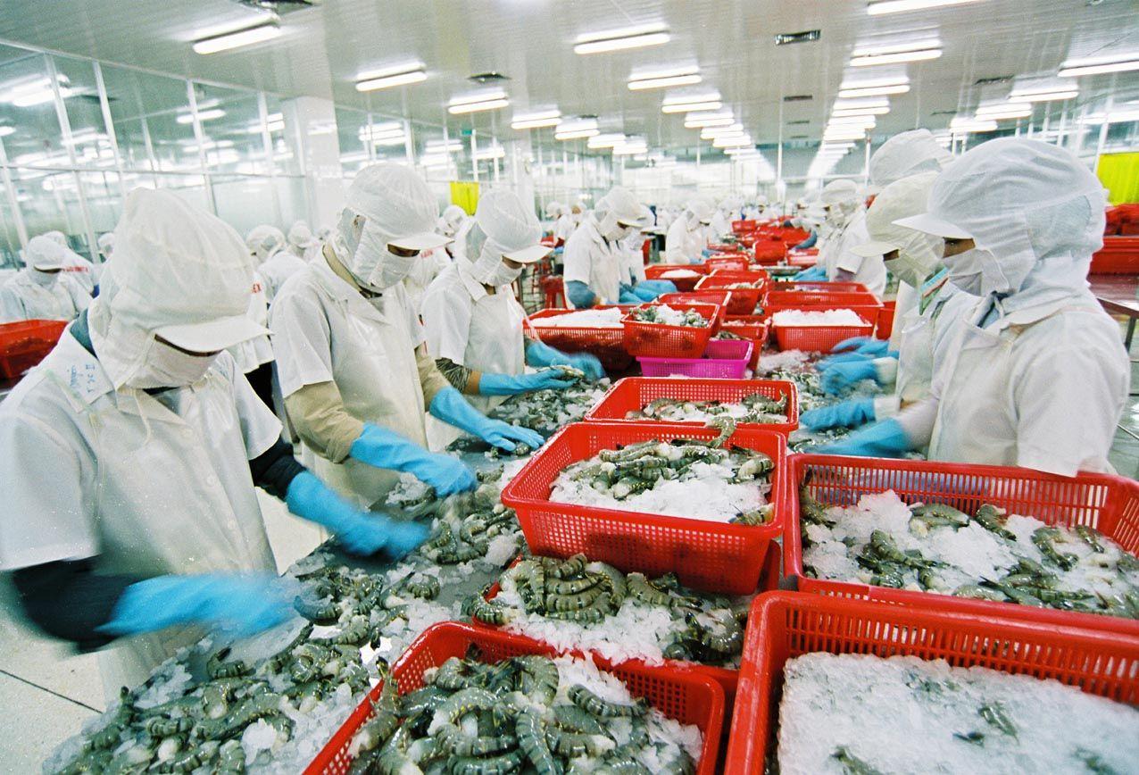 Doanh nghiệp Việt ở đâu trong tăng trưởng xuất khẩu?