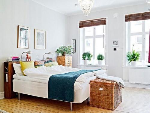 Bài trí cây xanh theo phong thủy trong phòng ngủ chọn những cây cảnh, chậu hoa nhỏ vừa phải, màu nhã nhặn