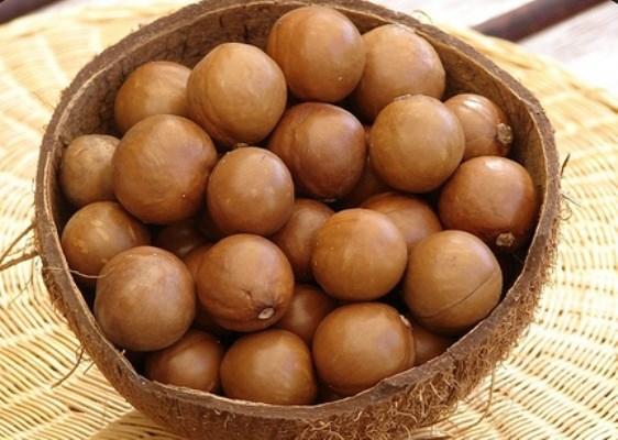 Hạt mắc ca được cho là loại hạt ngon nhất, và mắc nhất thế giới