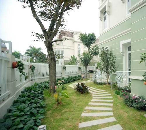 Có nên mua nhà có đất thóp hậu?