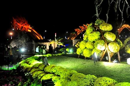 Vườn hoa Xuân đón du khách đến tham quan