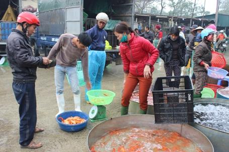 Sức mua cá chép vàng tại chợ này rất chậm