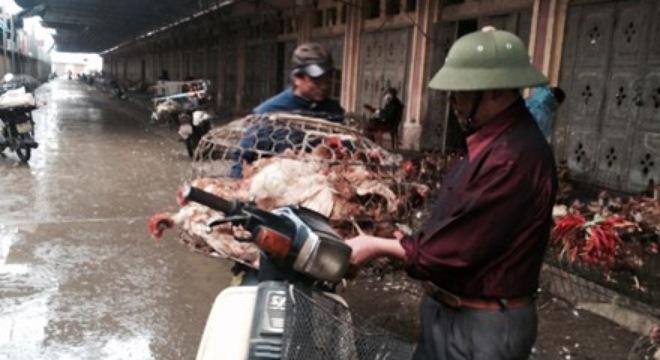 Chợ gia cầm lớn nhất phía Bắc đìu hiu giáp Tết