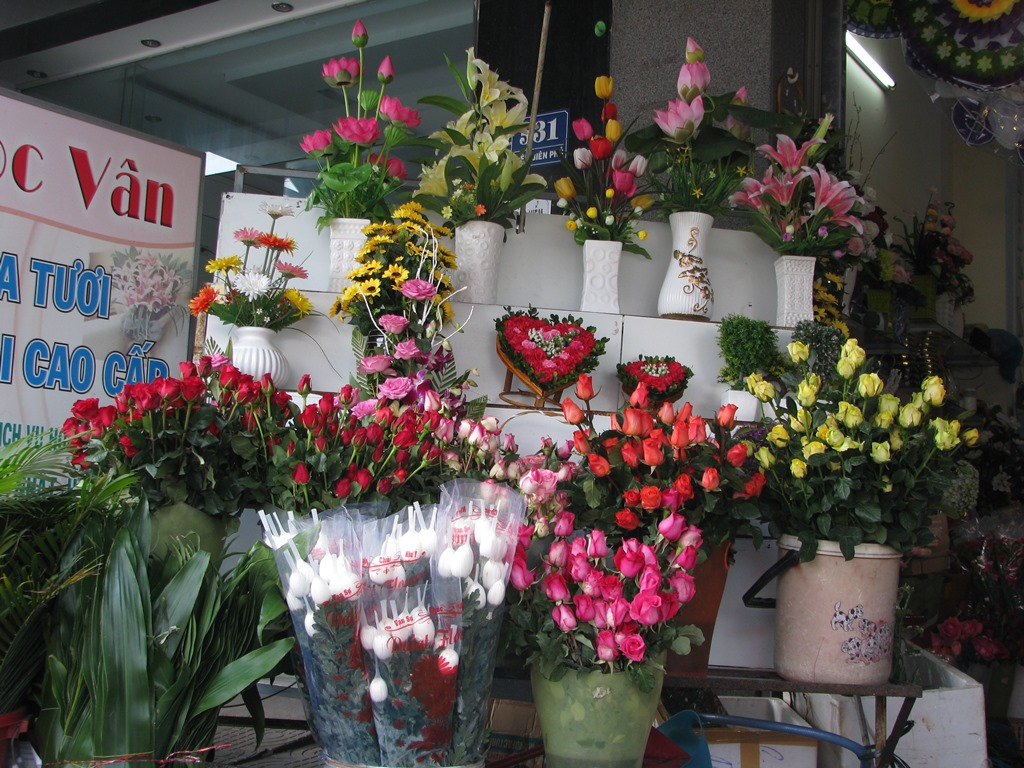 Hoa hồng Đà Lạt tăng giá đột biến dịp Valentine