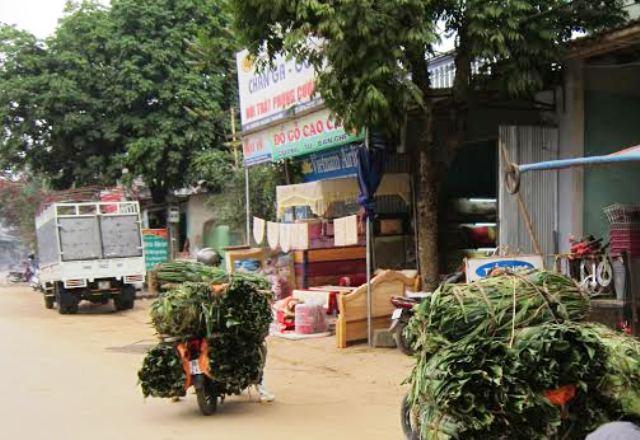 Lá dong được đưa lên các xe máy chở về thành phố tiêu thụ