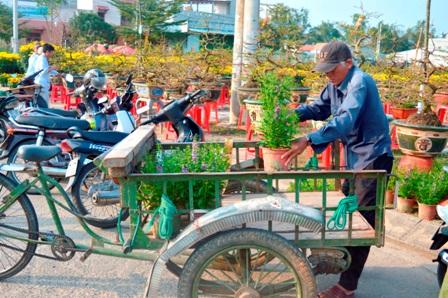 Người đàn ông này chở hoa thuê bằng xe ba gác vì không có xe máy