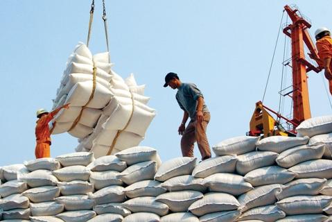 Thị trường Trung Quốc: Hy vọng đột phá cho xuất khẩu gạo 2015