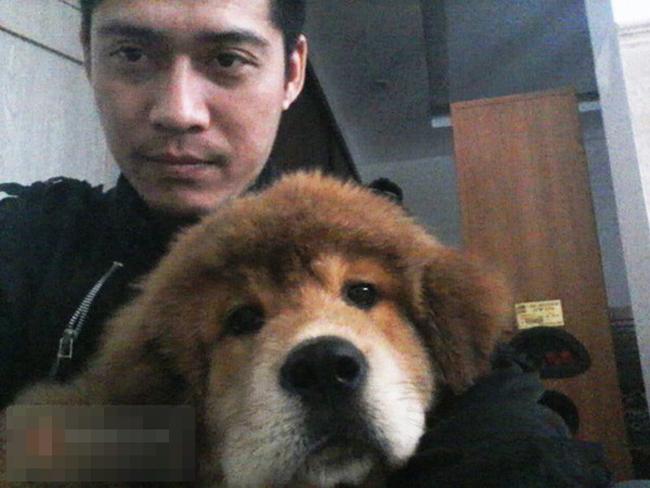 Chú chó ngao Tây Tạng tên Bông đáng yêu của anh N có giá 30 triệu đồng.