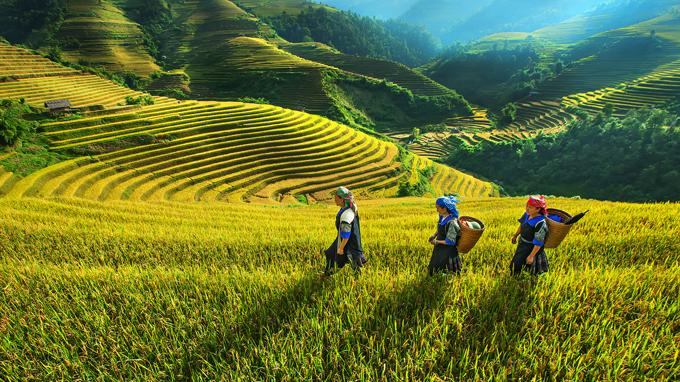 World Bank rót thêm 100 triệu USD cho khu vực nghèo nhất Việt Nam