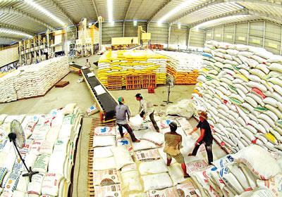 Thêm 2 ngân hàng được cho vay thu mua tạm trữ thóc, gạo