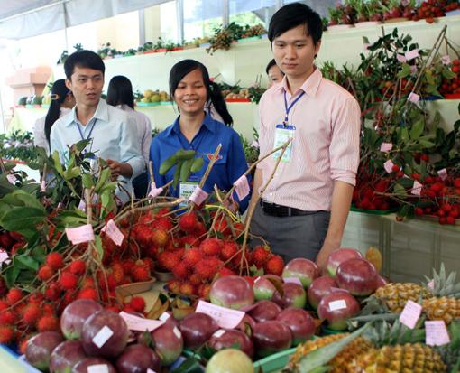 Xuất khẩu rau quả, kỳ vọng 2 tỉ đô năm 2015