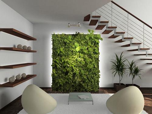 Tường xanh giải nhiệt cho nhà phố