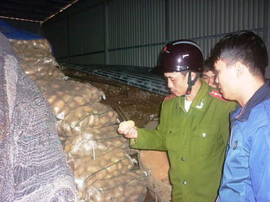 Biến khoai tây Trung Quốc thành khoai Đà Lạt