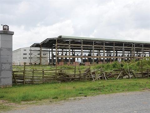 Nhiều khu công nghiệp ở trong tình trạng hoang hóa. Ảnh: TBKTSG