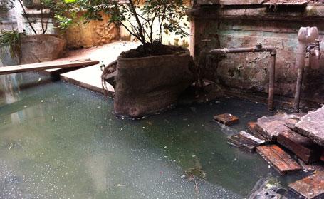 Nước thải, nước bể phốt luôn trong tình trạng ứ đọng sâu đến nửa mét