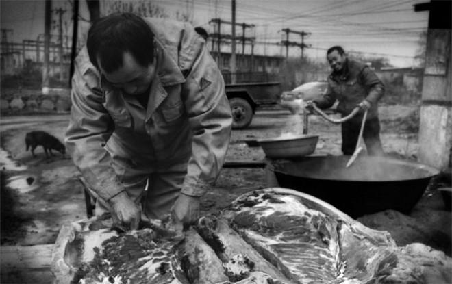 Người dân xẻ thịt lợn bán bên ngoài một nhà máy phân đạm - nhà máy này là tác nhân gây ô nhiễm trong khu vực bởi khói bụi từ đốt than. Việc đóng cửa các nhà máy gây ô nhiễm tại Trung Quốc gặp phải sự phản đối từ chính quyền nhiều địa phương, do lo ngại mất việc làm và giảm thu từ thuế - Ảnh: Bloomberg.
