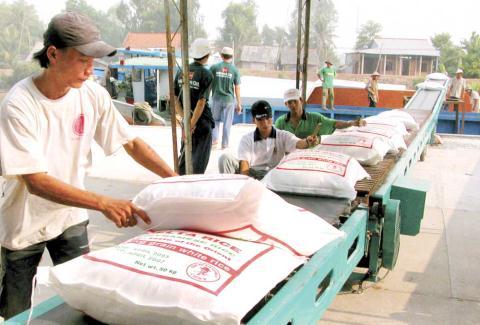 Xuất khẩu gạo chìm trong bóng tối: Không nằm ngoài dự đoán!