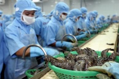 Brasil gỡ bỏ lệnh đình chỉ nhập khẩu thủy sản Việt Nam