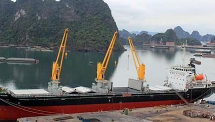 Tàu Trường Minh Dragon 12.500 tấn được chuyển giao. (Ảnh: VOV)