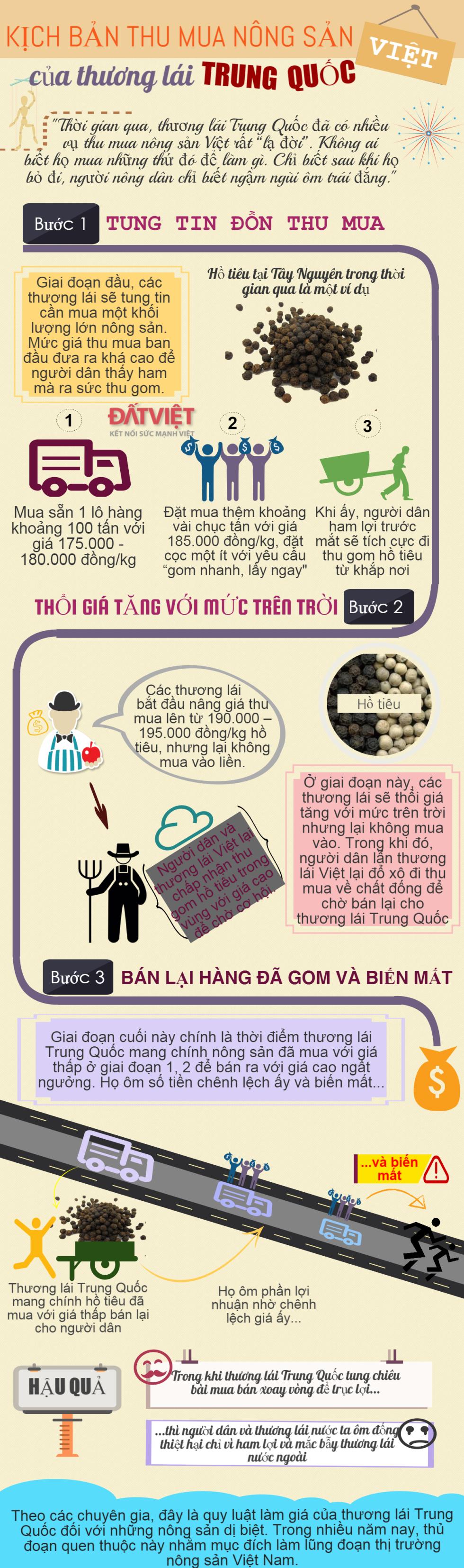 [Infographics] Hành trình thu mua nông sản Việt của thương lái Trung Quốc