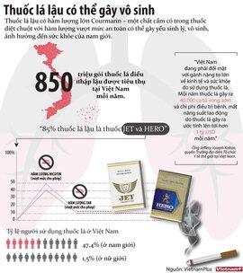 Thuốc lá lậu có thể gây vô sinh ở nam giới