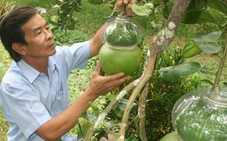 Ba thương hiệu nông sản tiền tỷ