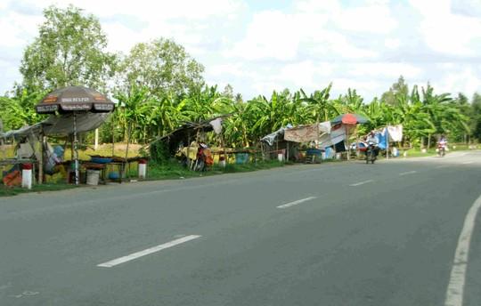 Những căn chòi tạm bợ được dựng lên ven đường để mưu sinh