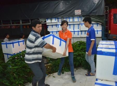 Vận chuyển vải thiều Lục Ngạn xuyên đêm tại Quảng Ngãi.