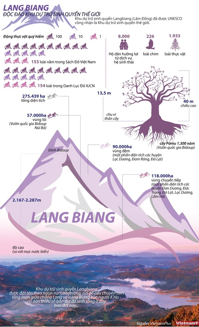 Vẻ đẹp của Khu dự trữ sinh quyển Langbiang