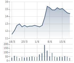 """7 nhà đầu tư mua hết 2,2 triệu cổ phiếu NDN bị """"ế"""""""