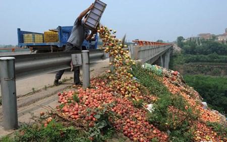 Nông dân Trung Quốc đổ đào đầy đường