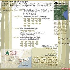 Chiến dịch cứu hộ 14 chú gấu ở Quảng Ninh
