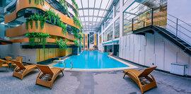 Bể bơi như ốc đảo nhỏ trong tòa nhà