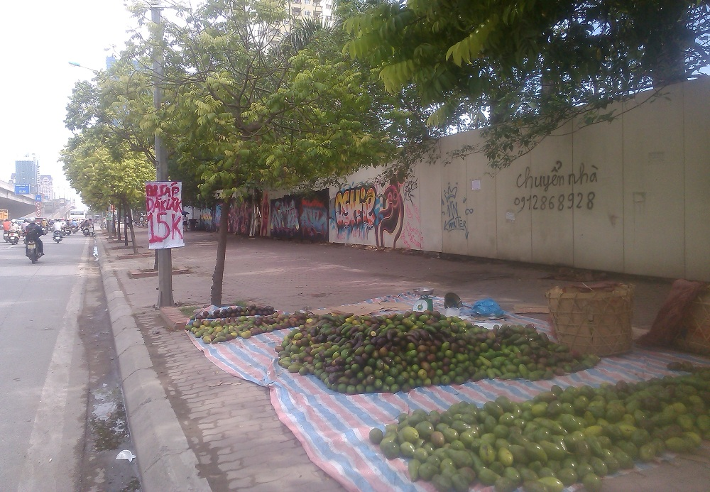 Trái bơ Việt Nam giá rẻ bán đổ đống ở vỉa hè đường Khuất Duy Tiến - Thanh Xuân (Hà Nội)