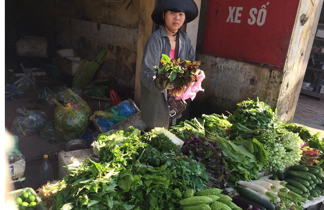 Dân buôn Hà Nội gom rau bán về Quảng Ninh lãi đậm