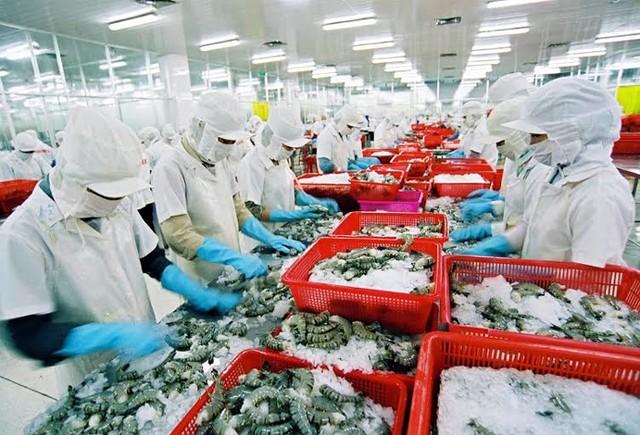Việt Nam đang mất thị phần tôm vào tay Ấn Độ, Indonesia trên thị trường lớn như Mỹ