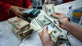 Giá USD tăng sau phiên giảm kỷ lục
