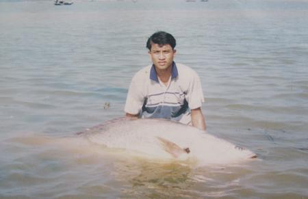 Ngư dân Thái Bình bán hớ cá