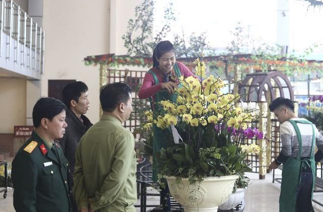 Cách Tết Nguyên đán chừng nửa tháng, hàng ngàn chậu lan hồ điệp được tập kết về chợ hoa Quảng Bá (Tây Hồ, Hà Nội).
