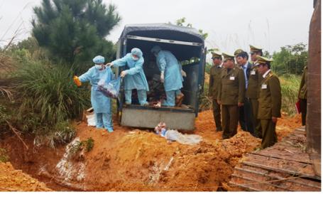 Quảng Bình: Phát hiện gần 80 vụ vi phạm thương mại trong dịp Tết Nguyên đán