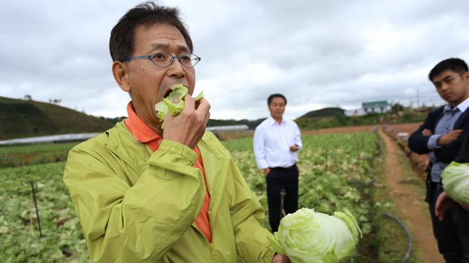 Chuyên gia Nhật: Nông dân Việt nên học làm nông nghiệp theo chuẩn