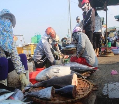 Các loại hải sản được ngư dân bày bán với mức giá được niêm yết từ 15 đến 45 ngàn/kg